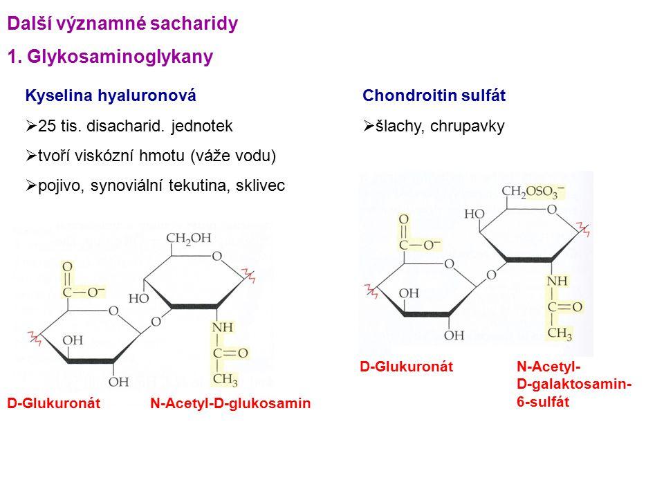 Další významné sacharidy 1. Glykosaminoglykany Kyselina hyaluronová  25 tis. disacharid. jednotek  tvoří viskózní hmotu (váže vodu)  pojivo, synovi