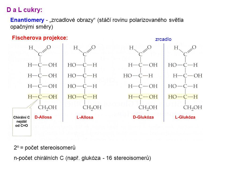 """D a L cukry: Enantiomery - """"zrcadlové obrazy"""" (stáčí rovinu polarizovaného světla opačnými směry) 2 n = počet stereoisomerů n-počet chirálních C (např"""