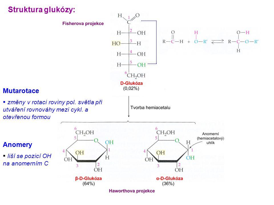 Struktura glukózy: Anomery  liší se pozicí OH na anomerním C Mutarotace  změny v rotaci roviny pol. světla při utváření rovnováhy mezi cykl. a otevř