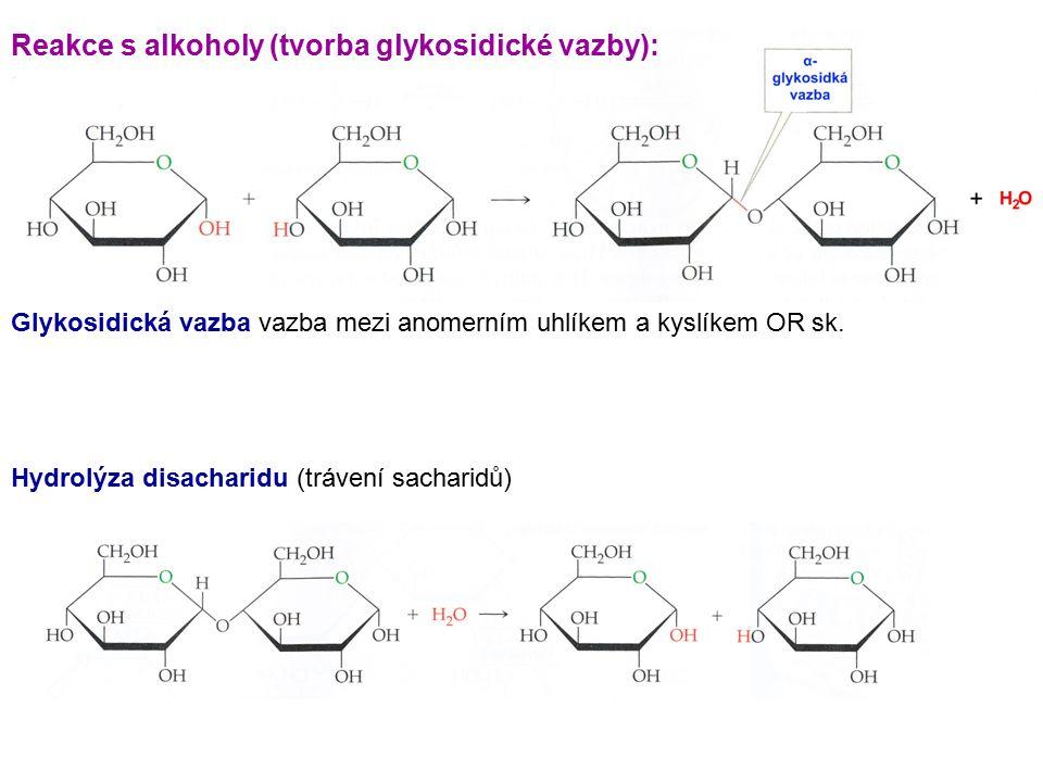 Glykosidická vazba vazba mezi anomerním uhlíkem a kyslíkem OR sk. Reakce s alkoholy (tvorba glykosidické vazby): Hydrolýza disacharidu (trávení sachar