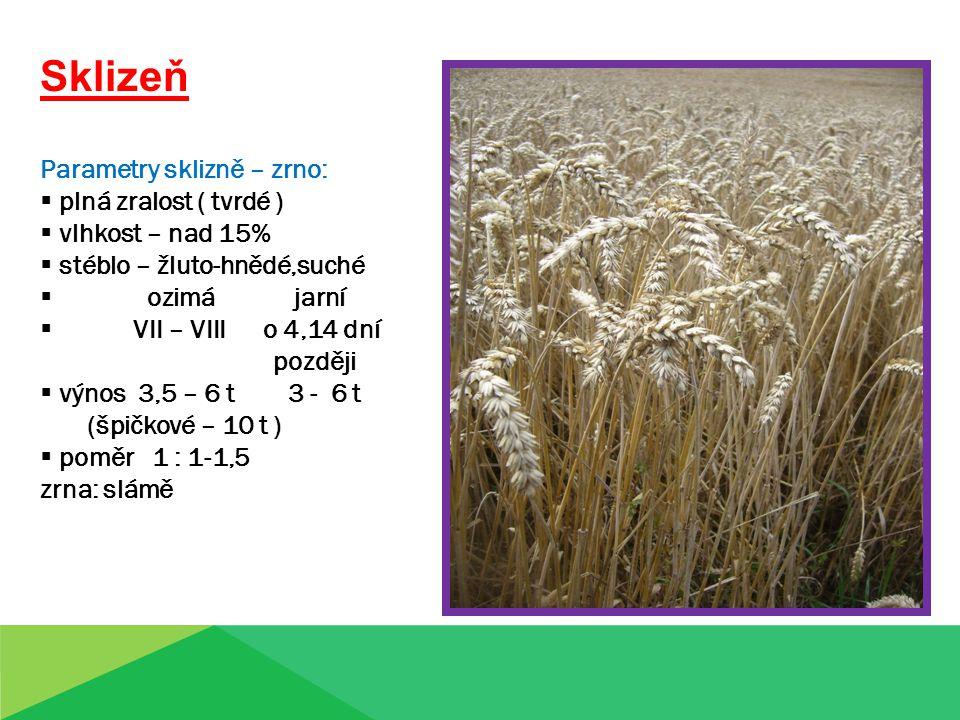 Sklizeň Parametry sklizně – zrno:  plná zralost ( tvrdé )  vlhkost – nad 15%  stéblo – žluto-hnědé,suché  ozimá jarní  VII – VIII o 4,14 dní později  výnos 3,5 – 6 t 3 - 6 t (špičkové – 10 t )  poměr 1 : 1-1,5 zrna: slámě Zrno