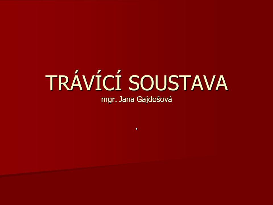 TRÁVÍCÍ SOUSTAVA mgr. Jana Gajdošová.