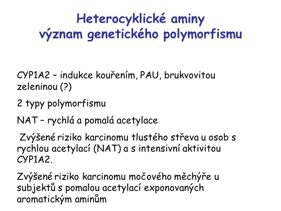 Heterocyklické aminy význam genetického polymorfismu CYP1A2 – indukce kouřením, PAU, brukvovitou zeleninou (?) 2 typy polymorfismu NAT – rychlá a pomalá acetylace Zvýšené riziko karcinomu tlustého střeva u osob s rychlou acetylací (NAT) a s intensivní aktivitou CYP1A2.