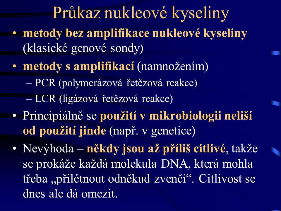 Průkaz nukleové kyseliny metody bez amplifikace nukleové kyseliny (klasické genové sondy) metody s amplifikací (namnožením) –PCR (polymerázová řetězov