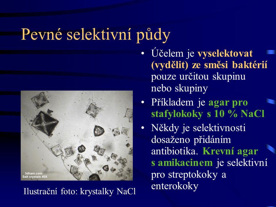 Pevné selektivní půdy Účelem je vyselektovat (vydělit) ze směsi baktérií pouze určitou skupinu nebo skupiny Příkladem je agar pro stafylokoky s 10 % N
