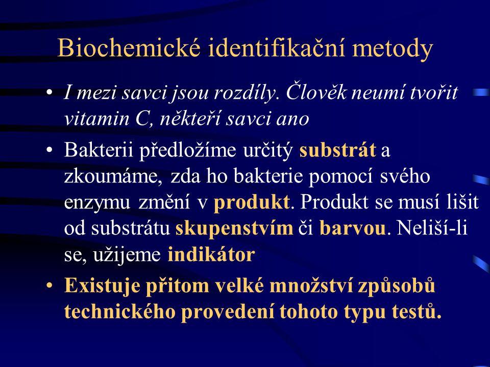 Biochemické identifikační metody I mezi savci jsou rozdíly. Člověk neumí tvořit vitamin C, někteří savci ano Bakterii předložíme určitý substrát a zko