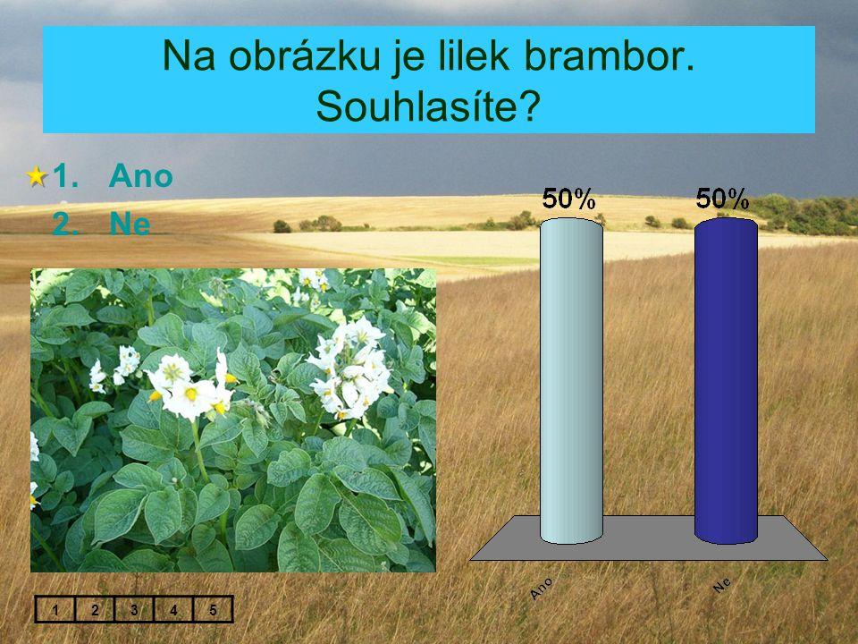Na obrázku je lilek brambor. Souhlasíte? 1.Ano 2.Ne 12345