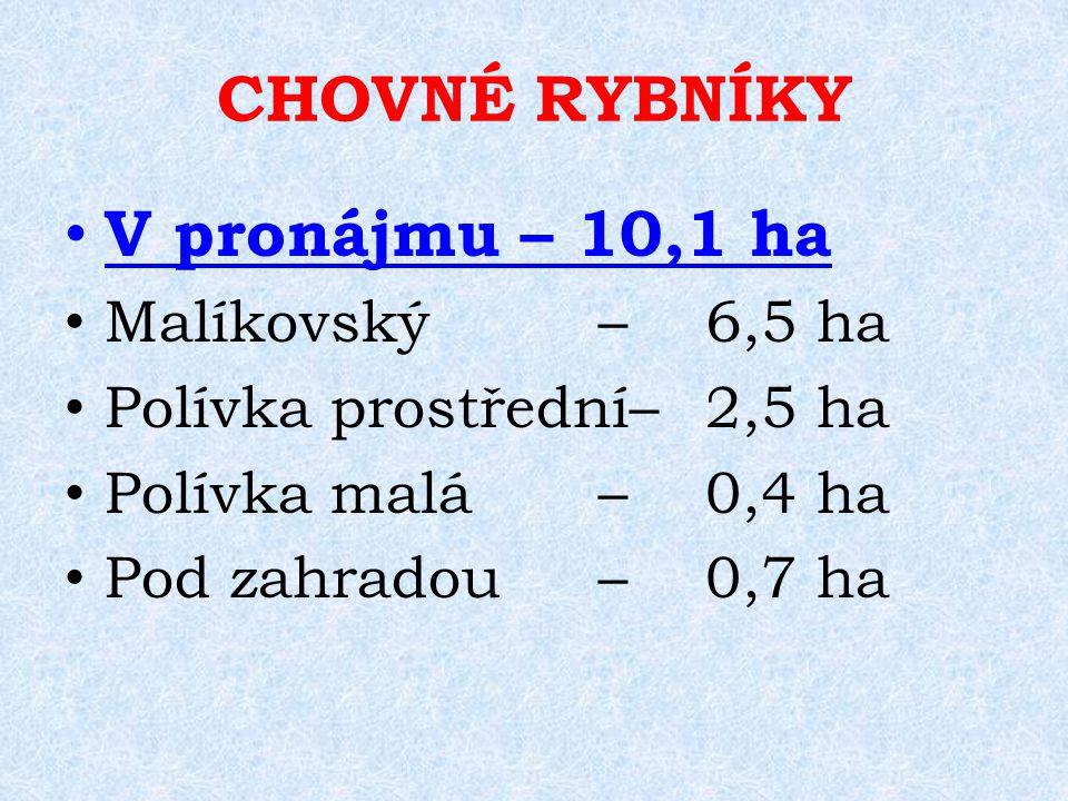 CHOVNÉ RYBNÍKY V pronájmu – 10,1 ha Malíkovský–6,5 ha Polívka prostřední–2,5 ha Polívka malá–0,4 ha Pod zahradou–0,7 ha