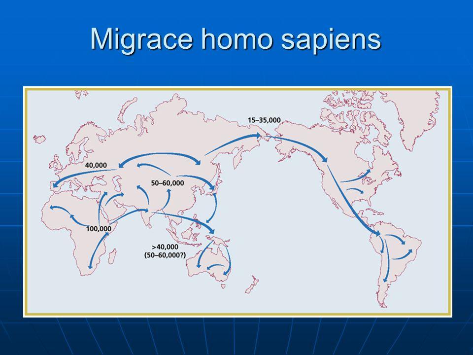 Migrace homo sapiens