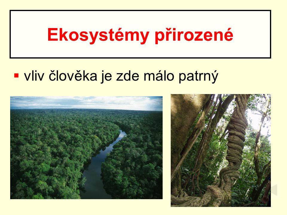  vliv člověka je zde málo patrný Ekosystémy přirozené