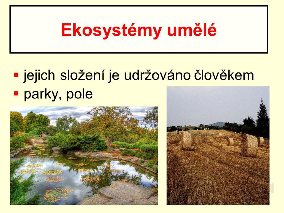  jejich složení je udržováno člověkem  parky, pole Ekosystémy umělé