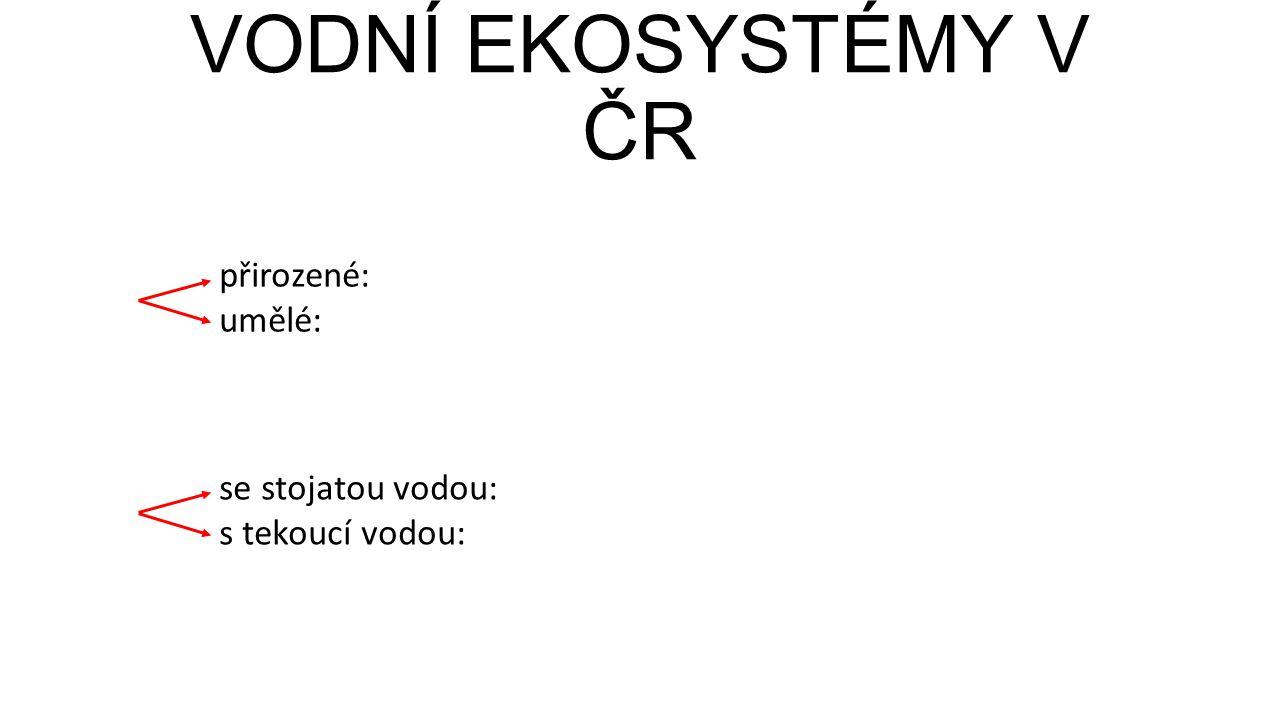 VODNÍ EKOSYSTÉMY V ČR přirozené: umělé: se stojatou vodou: s tekoucí vodou: