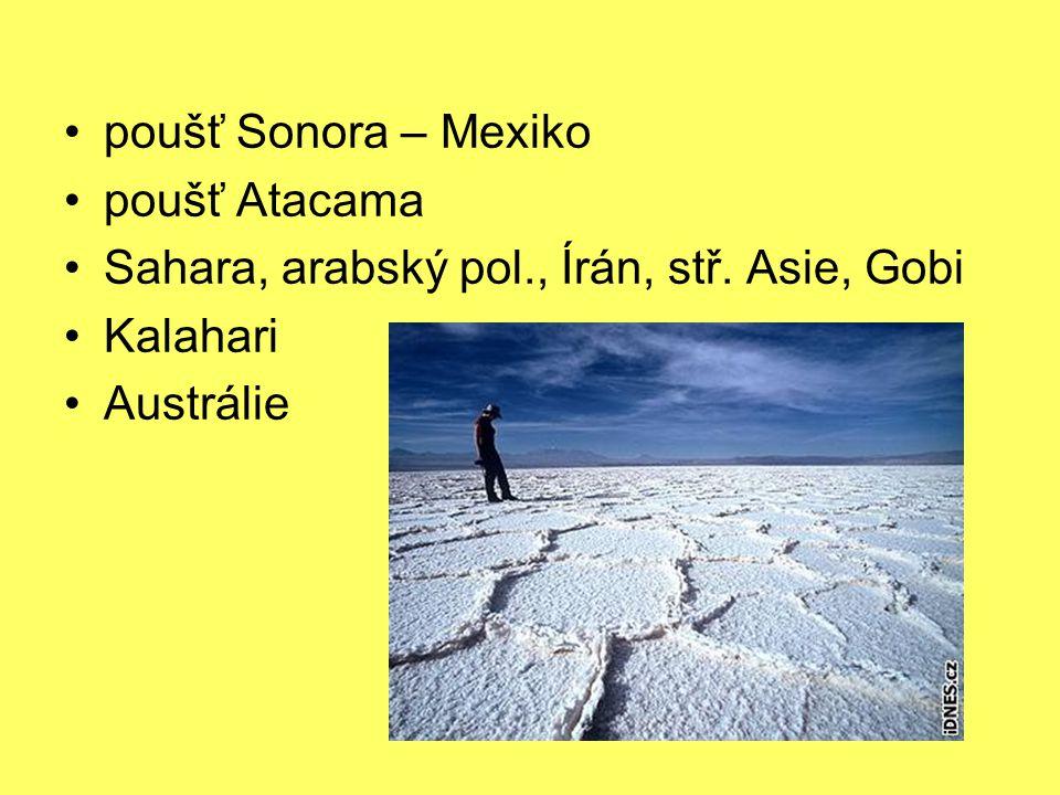 poušť Sonora – Mexiko poušť Atacama Sahara, arabský pol., Írán, stř. Asie, Gobi Kalahari Austrálie