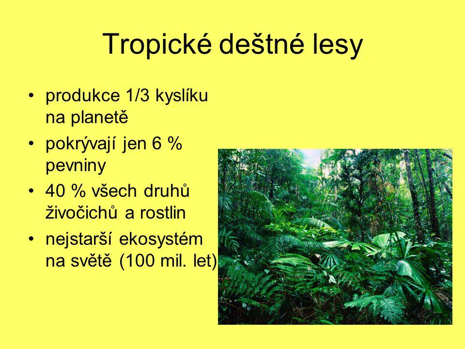 Tropické deštné lesy produkce 1/3 kyslíku na planetě pokrývají jen 6 % pevniny 40 % všech druhů živočichů a rostlin nejstarší ekosystém na světě (100