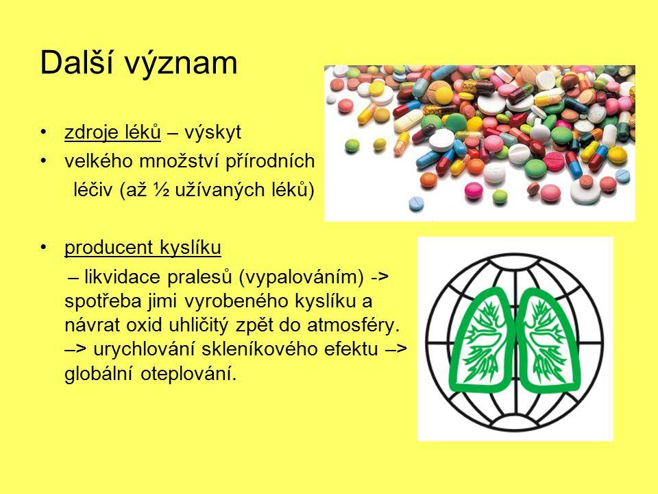 Další význam zdroje léků – výskyt velkého množství přírodních léčiv (až ½ užívaných léků) producent kyslíku – likvidace pralesů (vypalováním) -> spotř