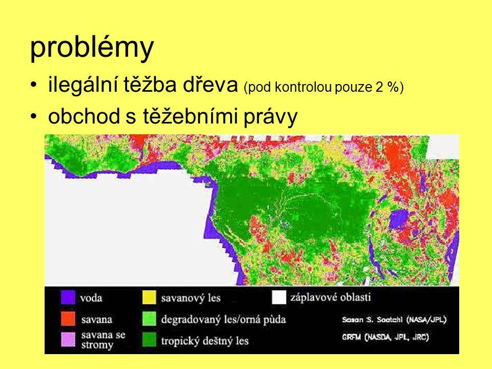 problémy ilegální těžba dřeva (pod kontrolou pouze 2 %) obchod s těžebními právy