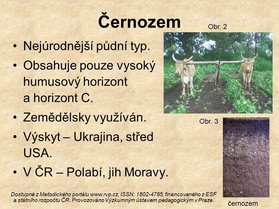 Černozem Nejúrodnější půdní typ.Obsahuje pouze vysoký humusový horizont a horizont C.