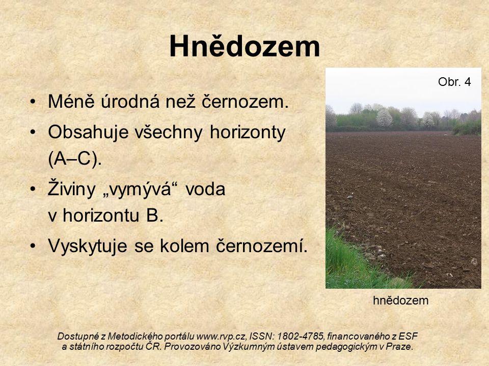Hnědozem Méně úrodná než černozem.Obsahuje všechny horizonty (A–C).