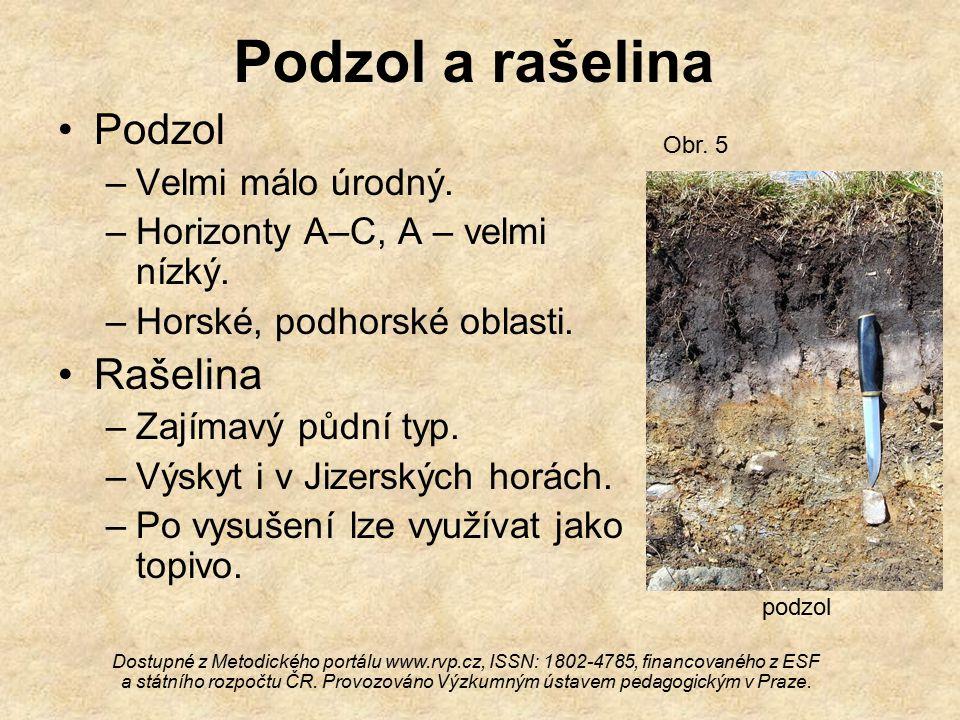 Podzol a rašelina Podzol –Velmi málo úrodný.–Horizonty A–C, A – velmi nízký.