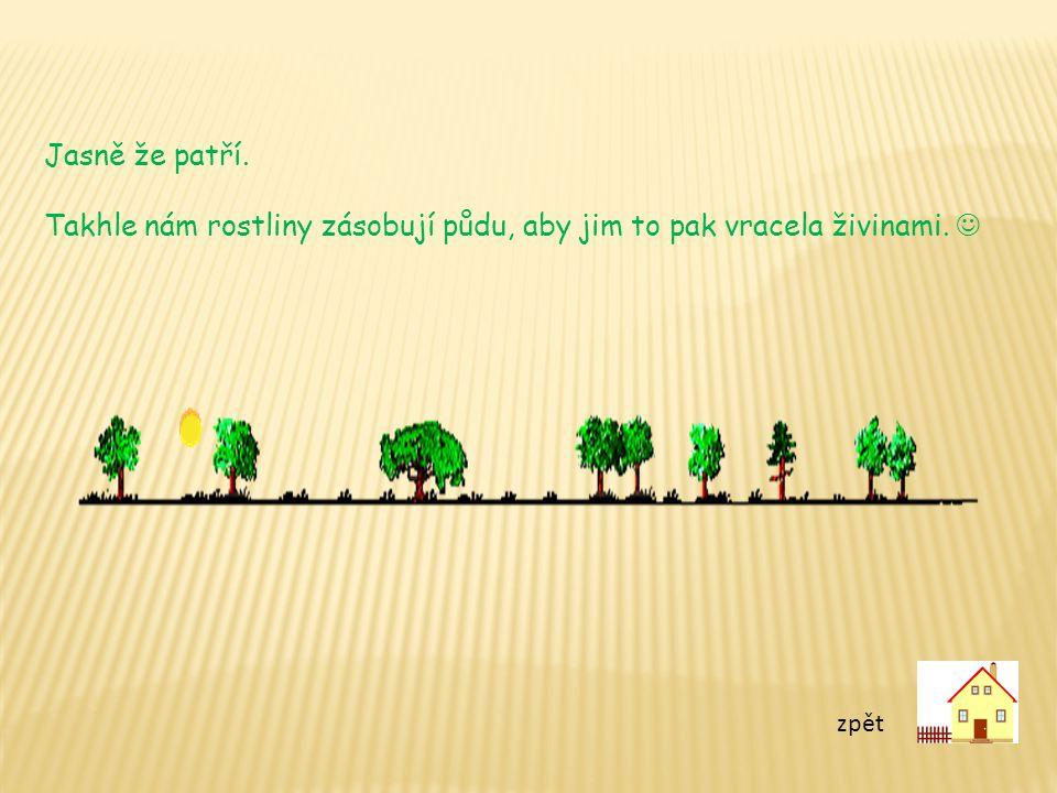 zpět Jasně že patří. Takhle nám rostliny zásobují půdu, aby jim to pak vracela živinami.