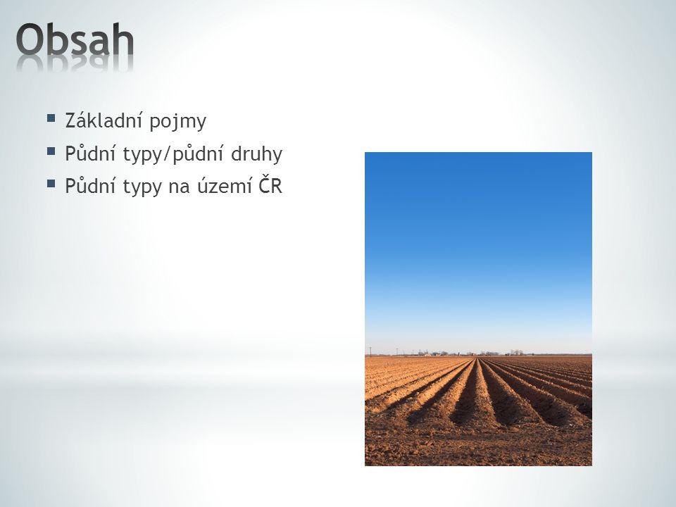  Základní pojmy  Půdní typy/půdní druhy  Půdní typy na území ČR