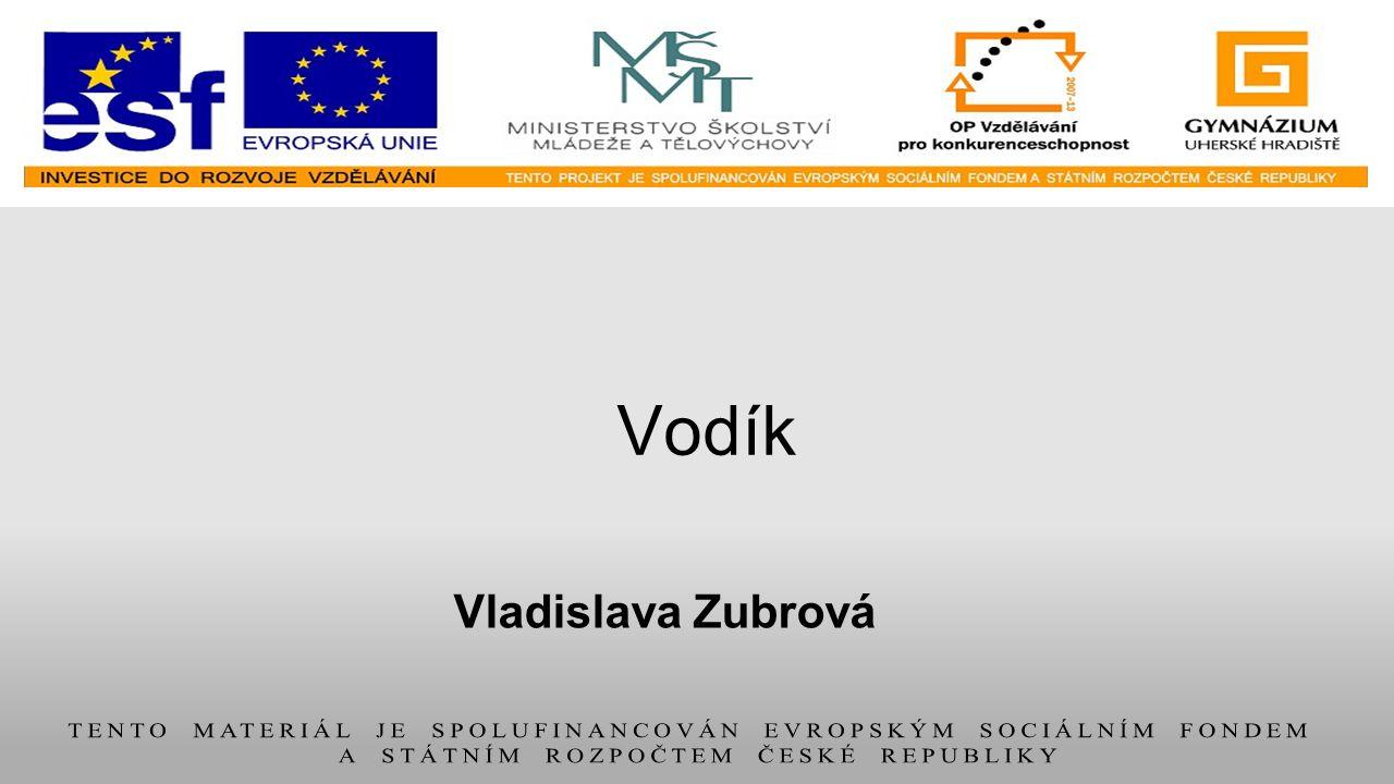 Vladislava Zubrová Vodík