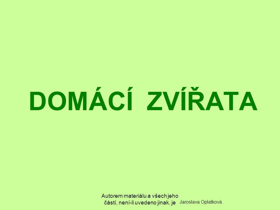 Autorem materiálu a všech jeho částí, není-li uvedeno jinak, je DOMÁCÍ ZVÍŘATA Jaroslava Oplatková.