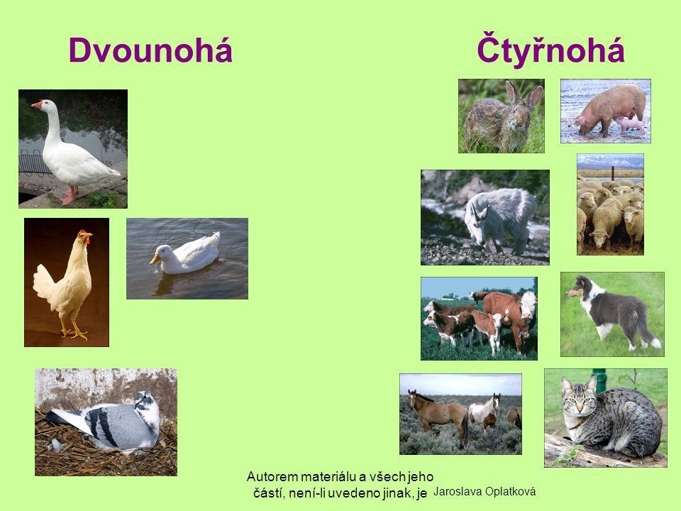 Autorem materiálu a všech jeho částí, není-li uvedeno jinak, je DvounoháČtyřnohá Jaroslava Oplatková