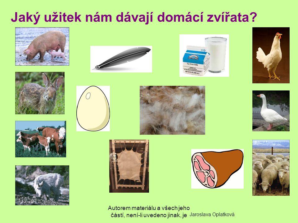 Autorem materiálu a všech jeho částí, není-li uvedeno jinak, je Jaký užitek nám dávají domácí zvířata? Jaroslava Oplatková