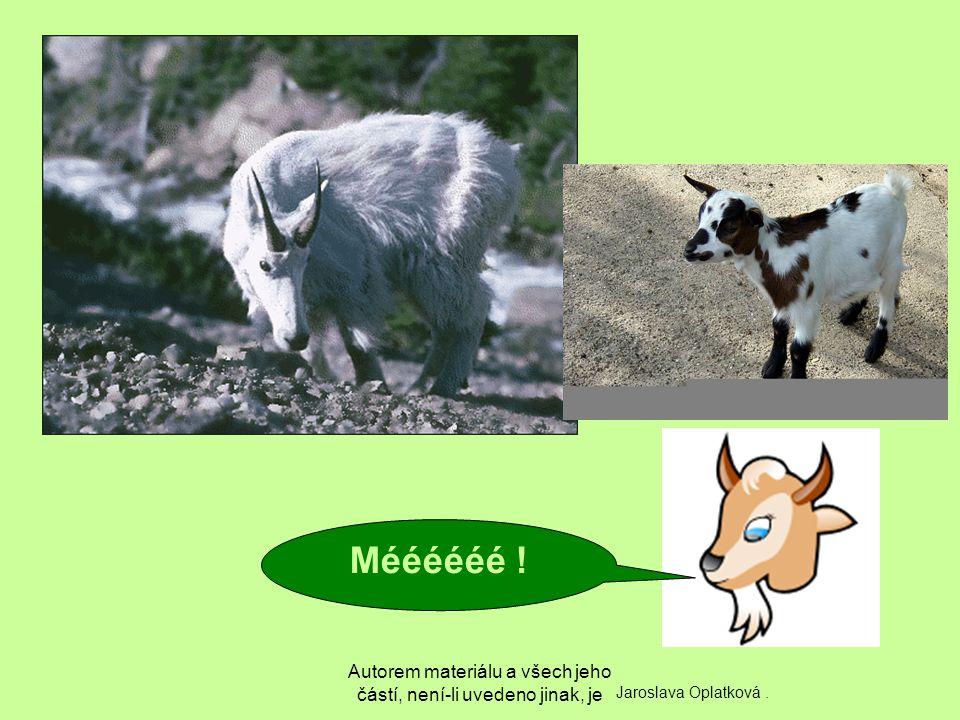 Autorem materiálu a všech jeho částí, není-li uvedeno jinak, je Tahle koza tvrdohlavá, ta se něco namečí.
