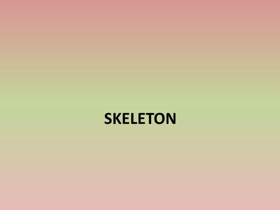 HISTORIE Skeleton je zimní sport podobný bobování Závodník sjíždí ledovým korytem na speciálních nízkých saních vleže na břiše hlavou dopředu Saně pro skeleton vypadají jako polstrovaná deska s úchyty po straně opatřená zespodu ocelovými noži Skeleton byl součástí OH v roce 1928, v roce 1948 a pak až v roce 2002, od kdy je trvalou součástí