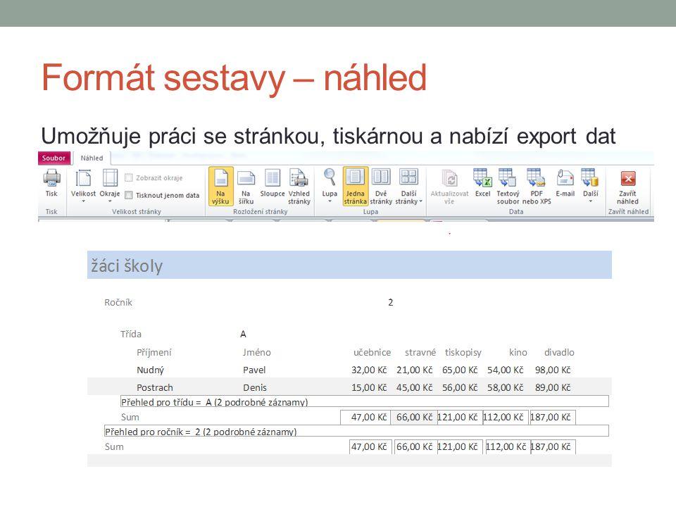 Formát sestavy – náhled Umožňuje práci se stránkou, tiskárnou a nabízí export dat