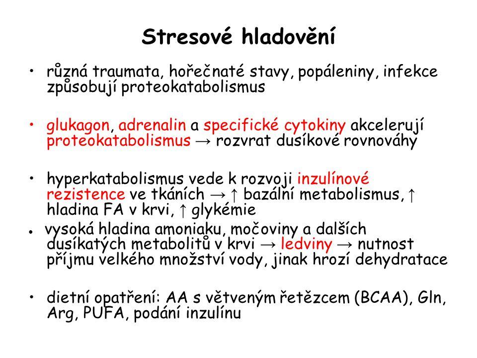 Stresové hladovění různá traumata, hořečnaté stavy, popáleniny, infekce způsobují proteokatabolismus glukagon, adrenalin a specifické cytokiny akceler