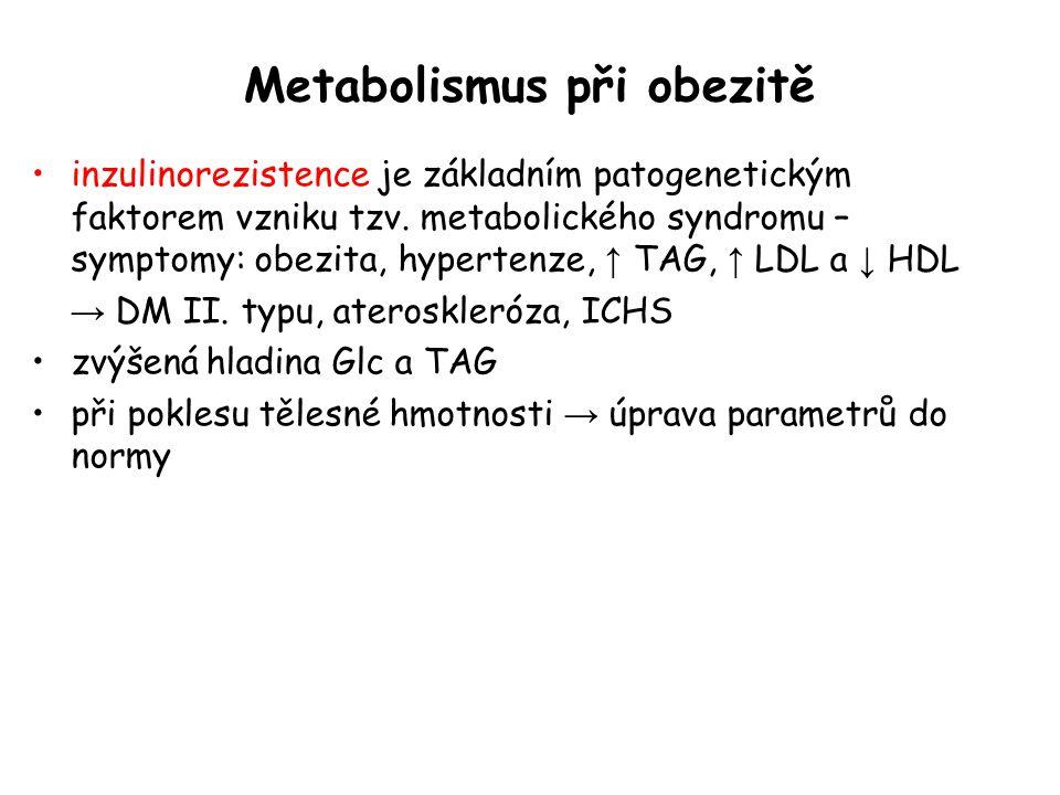 Metabolismus při obezitě inzulinorezistence je základním patogenetickým faktorem vzniku tzv. metabolického syndromu – symptomy: obezita, hypertenze, ↑