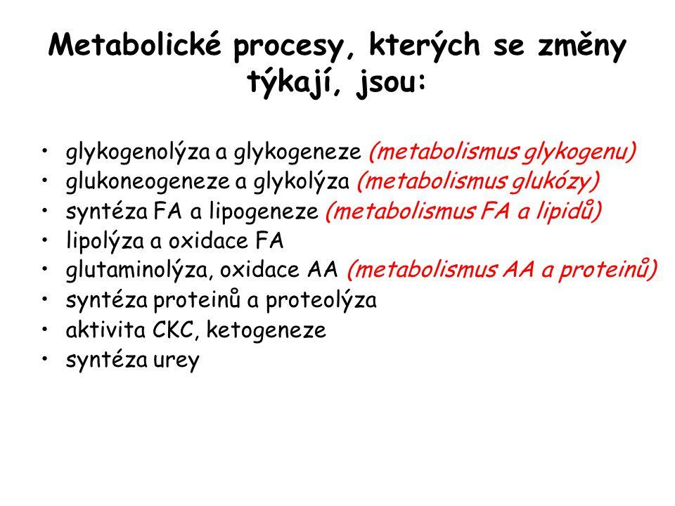 Metabolické procesy, kterých se změny týkají, jsou: glykogenolýza a glykogeneze (metabolismus glykogenu) glukoneogeneze a glykolýza (metabolismus gluk