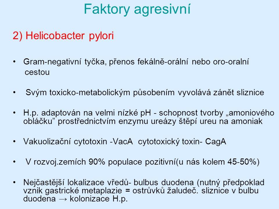 2) Helicobacter pylori Gram-negativní tyčka, přenos fekálně-orální nebo oro-oralní cestou Svým toxicko-metabolickým působením vyvolává zánět sliznice H.p.