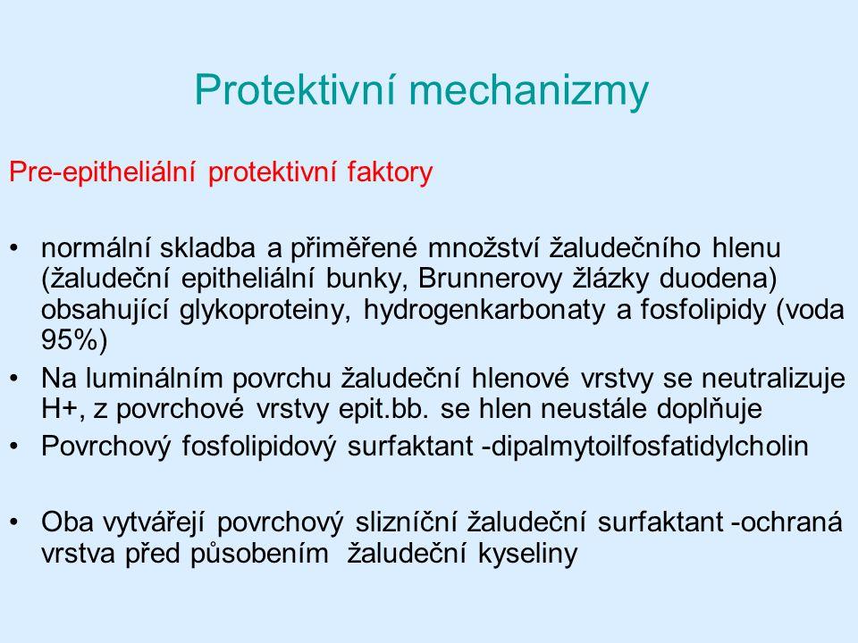 Protektivní mechanizmy Pre-epitheliální protektivní faktory normální skladba a přiměřené množství žaludečního hlenu (žaludeční epitheliální bunky, Brunnerovy žlázky duodena) obsahující glykoproteiny, hydrogenkarbonaty a fosfolipidy (voda 95%) Na luminálním povrchu žaludeční hlenové vrstvy se neutralizuje H+, z povrchové vrstvy epit.bb.