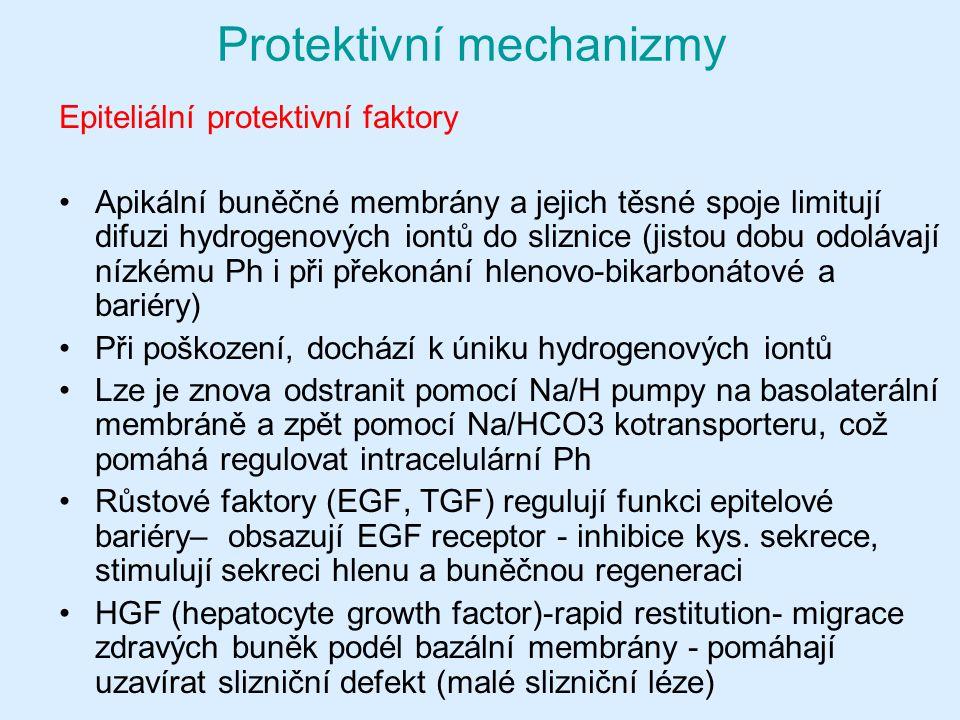 Protektivní mechanizmy Epiteliální protektivní faktory Apikální buněčné membrány a jejich těsné spoje limitují difuzi hydrogenových iontů do sliznice (jistou dobu odolávají nízkému Ph i při překonání hlenovo-bikarbonátové a bariéry) Při poškození, dochází k úniku hydrogenových iontů Lze je znova odstranit pomocí Na/H pumpy na basolaterální membráně a zpět pomocí Na/HCO3 kotransporteru, což pomáhá regulovat intracelulární Ph Růstové faktory (EGF, TGF) regulují funkci epitelové bariéry– obsazují EGF receptor - inhibice kys.