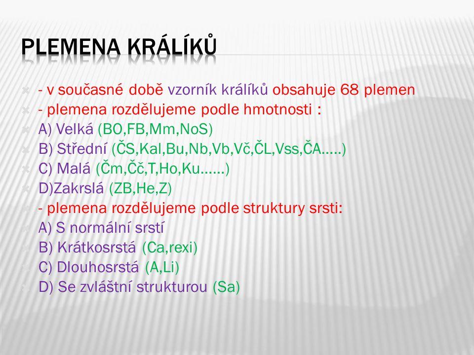  - v současné době vzorník králíků obsahuje 68 plemen  - plemena rozdělujeme podle hmotnosti :  A) Velká (BO,FB,Mm,NoS)  B) Střední (ČS,Kal,Bu,Nb,