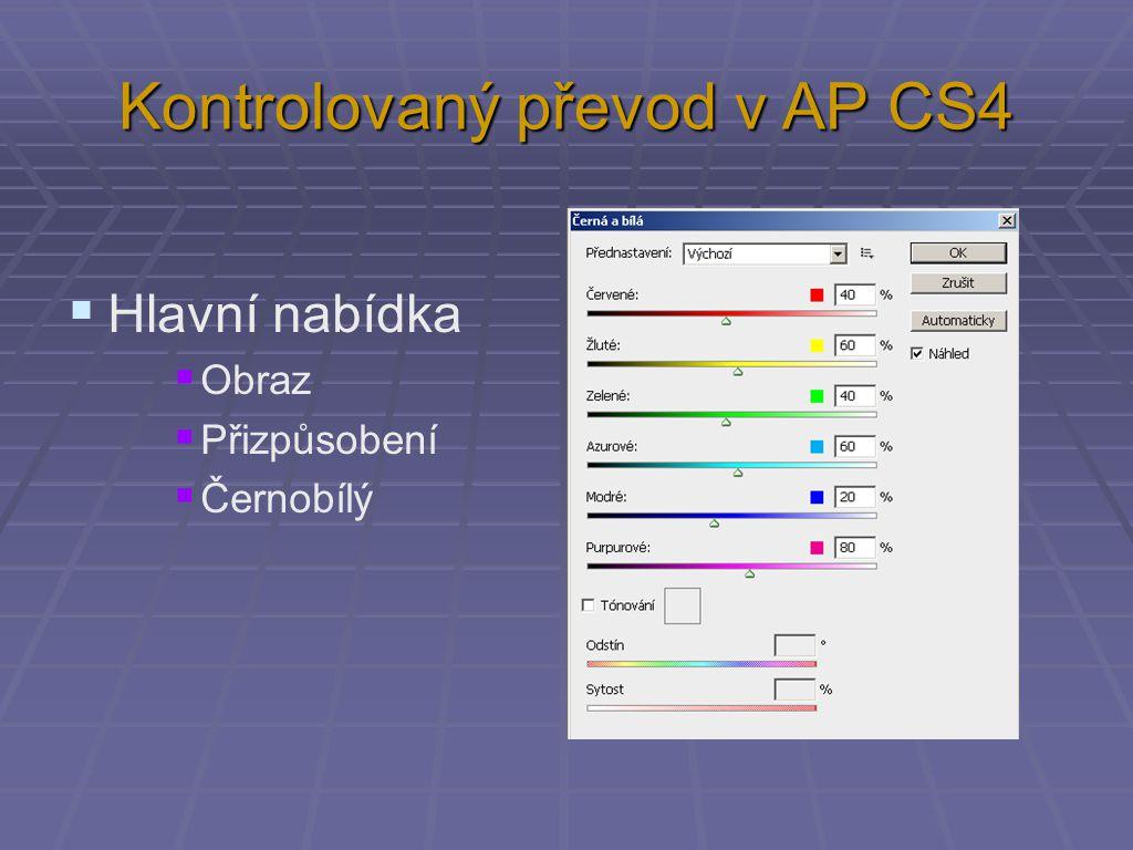 Kontrolovaný převod v AP CS4  Hlavní nabídka  Obraz  Přizpůsobení  Černobílý