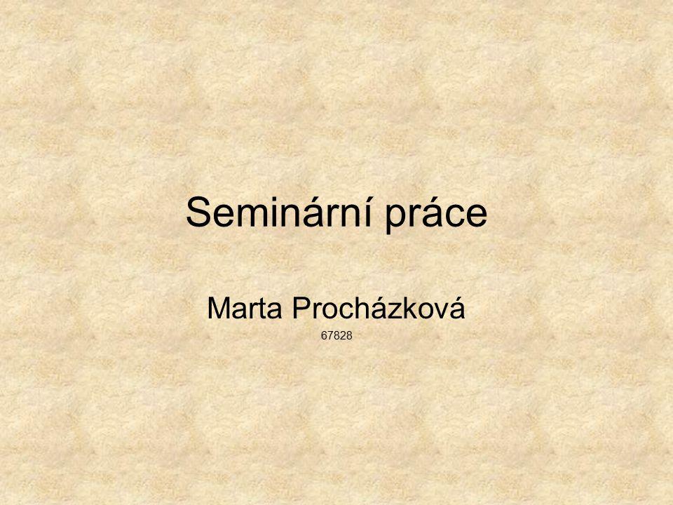 Seminární práce Marta Procházková 67828