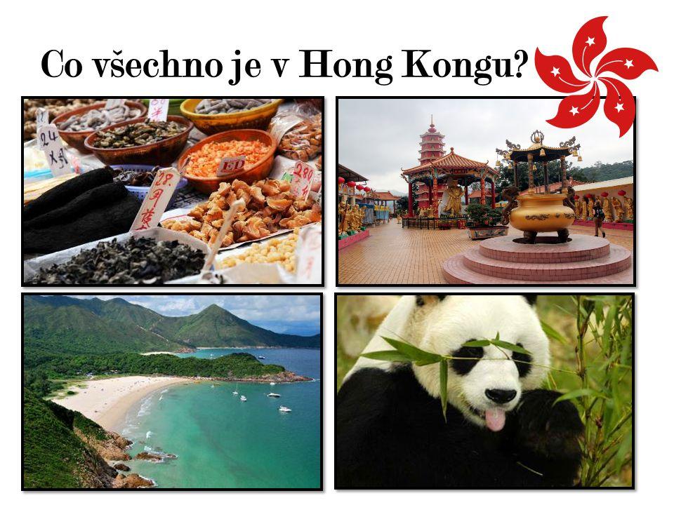 Co všechno je v Hong Kongu?