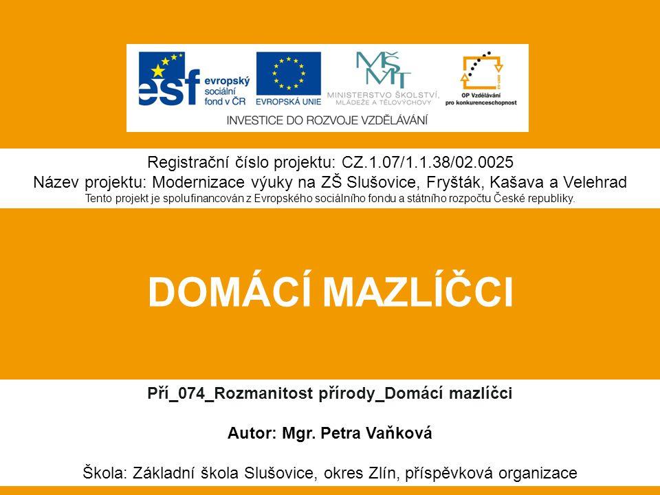 DOMÁCÍ MAZLÍČCI Pří_074_Rozmanitost přírody_Domácí mazlíčci Autor: Mgr.