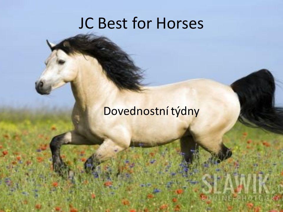 JC Best for Horses Dovednostní týdny