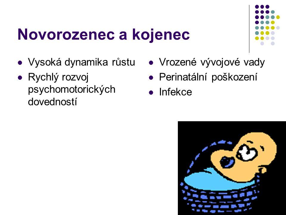Novorozenec a kojenec Vysoká dynamika růstu Rychlý rozvoj psychomotorických dovedností Vrozené vývojové vady Perinatální poškození Infekce