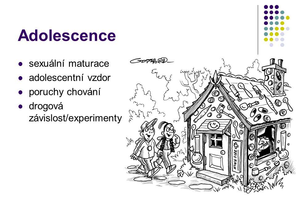 Adolescence sexuální maturace adolescentní vzdor poruchy chování drogová závislost/experimenty