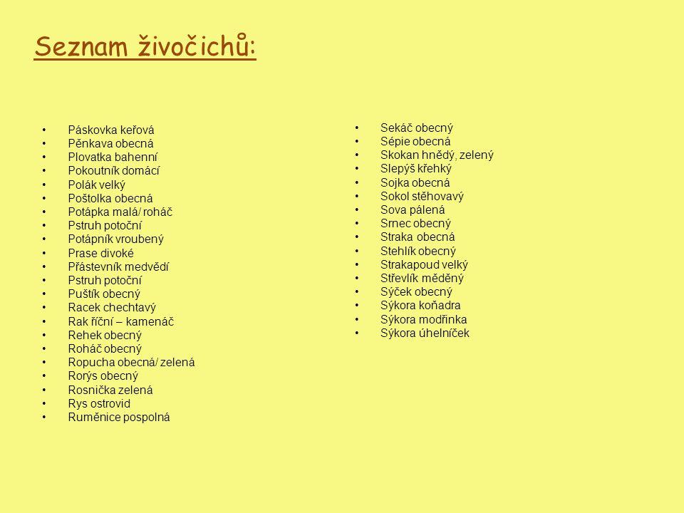 Seznam živočichů: Sekáč obecný Sépie obecná Skokan hnědý, zelený Slepýš křehký Sojka obecná Sokol stěhovavý Sova pálená Srnec obecný Straka obecná Ste