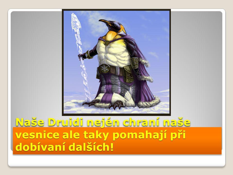 Naše Druidi nején chraní naše vesnice ale taky pomahají při dobívaní dalších!