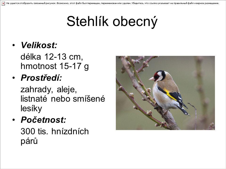 Stehlík obecný Velikost: délka 12-13 cm, hmotnost 15-17 g Prostředí: zahrady, aleje, listnaté nebo smíšené lesíky Početnost: 300 tis.