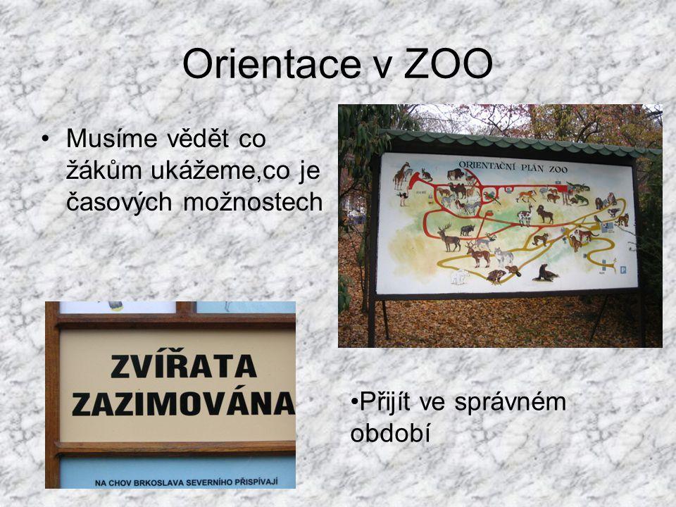 Programy a exkurze Zaleží na věku žáků a osnovách probíraného učiva Nevšímáme si jen živočichů (Mniší hora je zalesněna a porostla vegetací) Využití některého výukového programu Zoo Brno Vše je jen na domluvě s vedením Zoo!